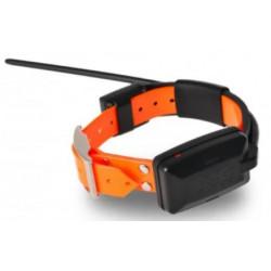 Collare aggiuntivo per DOG GPS X20 DOGTRACE arancione